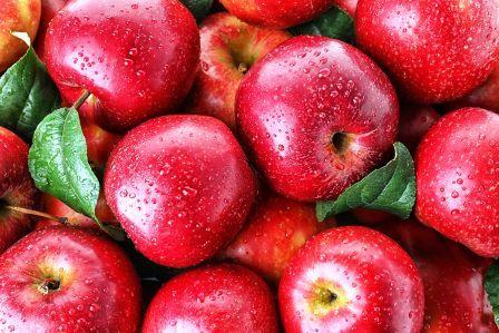 Seb Apple in Hindi: सेब जानकारी, खाने के फायदे और नुकसान) -